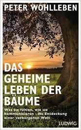 03.w.Buch