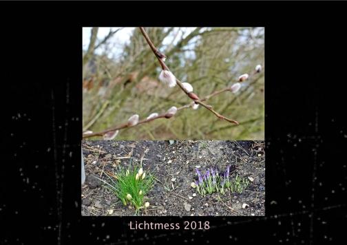 10.Lichtmess18.w