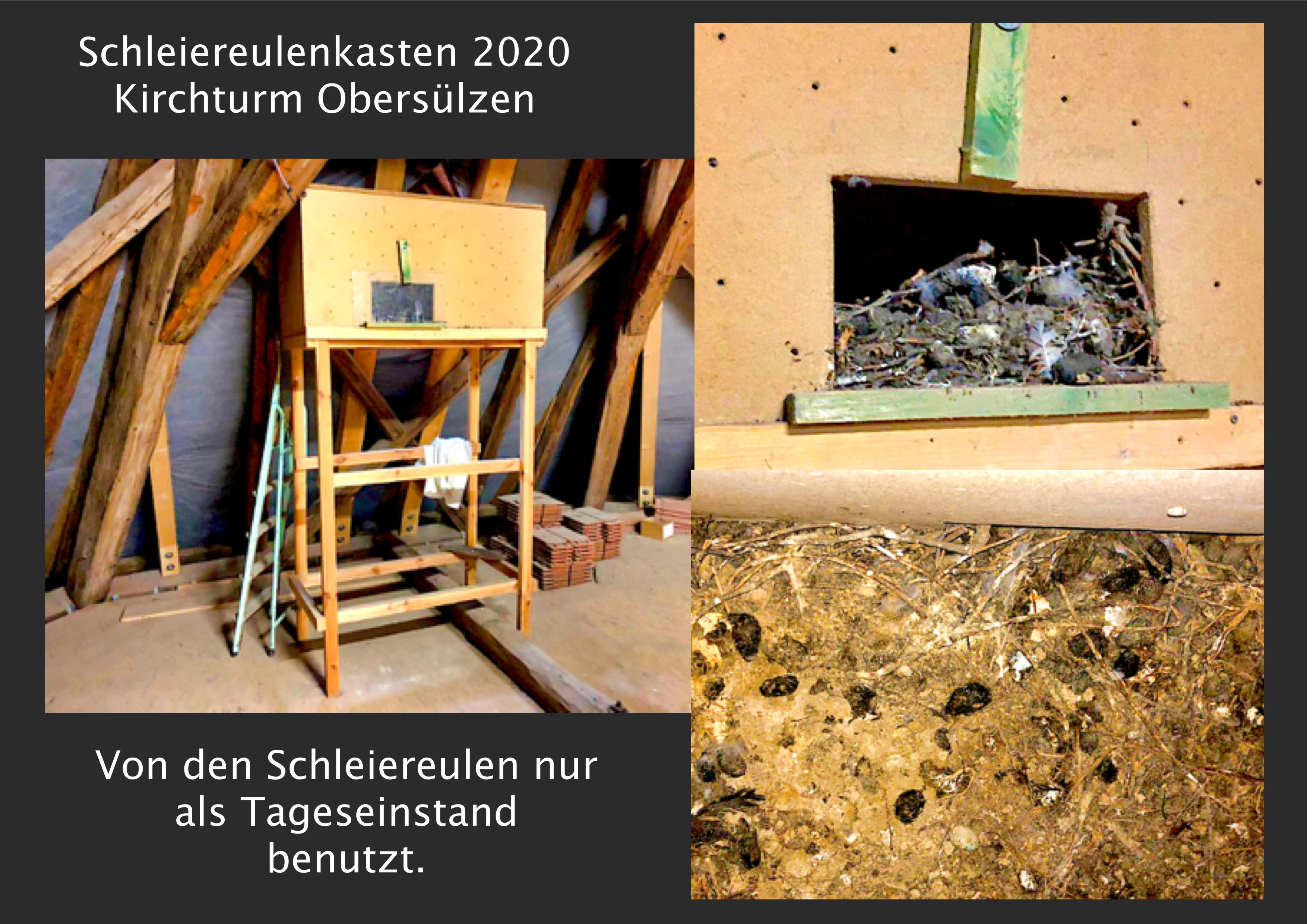 03.Schleiereulenkasten_2020