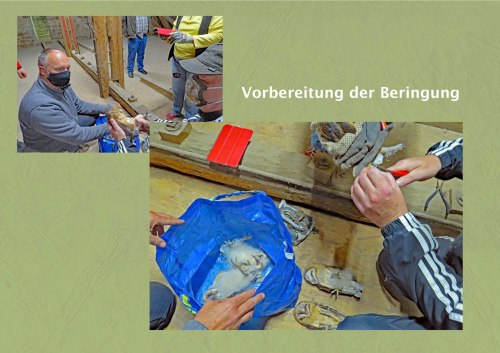 02.wBeringung
